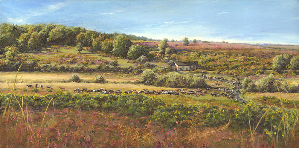 A new forest cattle drift painting at Holmsley Passage near Burley
