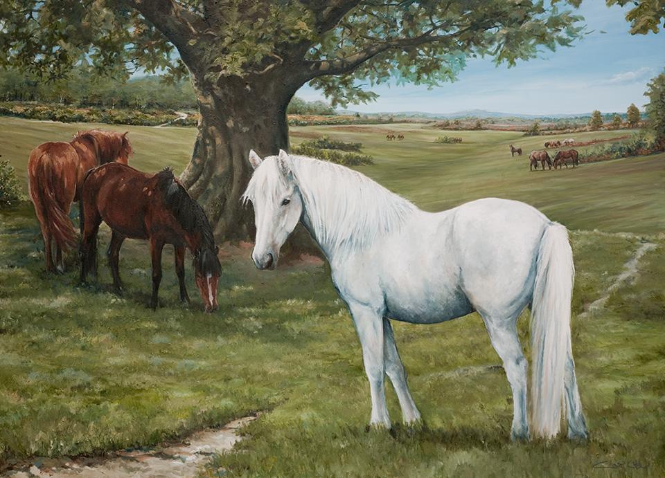 The White Horse Romsey