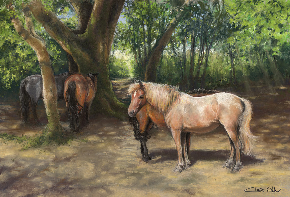 Shading in a New Forest Copse Designed and sold by Claire Kitcher New Forest ponies taking the cool shade of a beech & holly copse at Wootton in the New Forest.